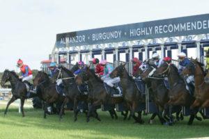 New Zealand: racing bill still facing opposition