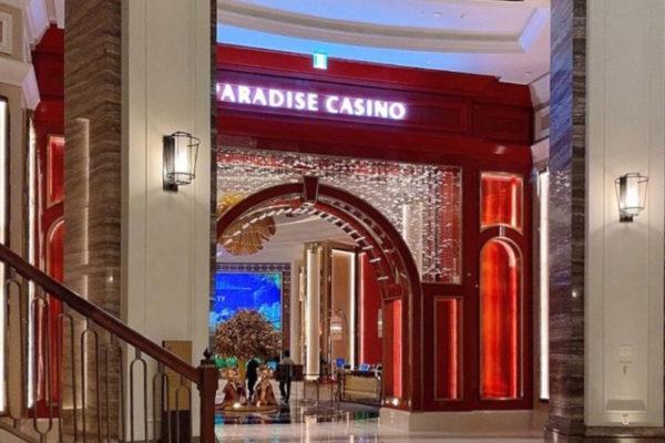 paradise-co-sales-show-monthly-improvement