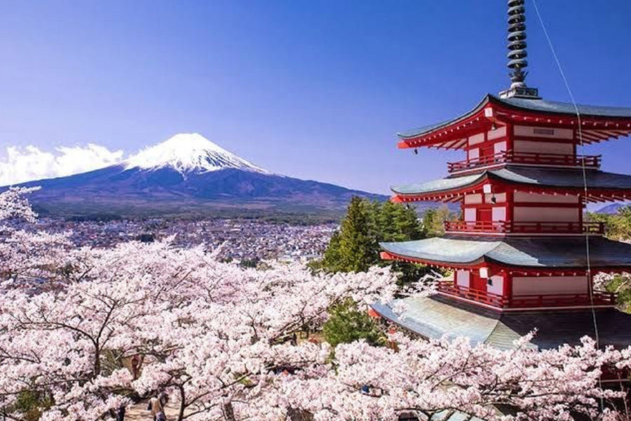 Tourism in Japan remains heavily impacted by the pandemic.