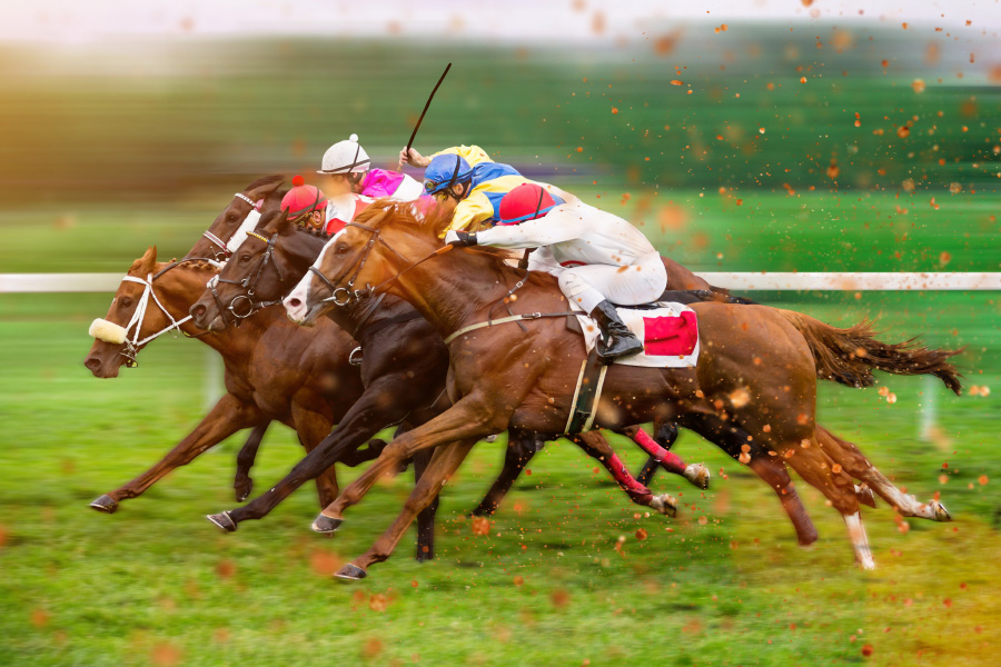 There are more than 21,000 horse races held each year in Japan.