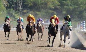 Propietarios de caballos de carreras reclaman reapertura de hipódromo La Plata