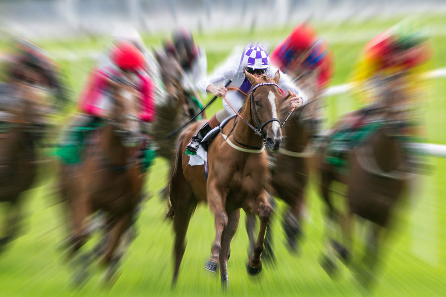 La Lotería adeuda premios a los caballos de carreras.