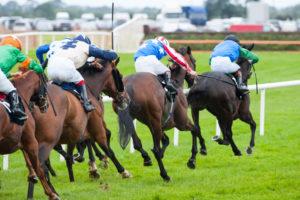 Horse racing fixtures added
