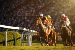 The Jockey Club names new chief executive